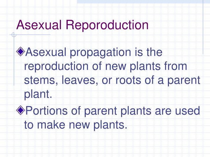 Asexual Reporoduction