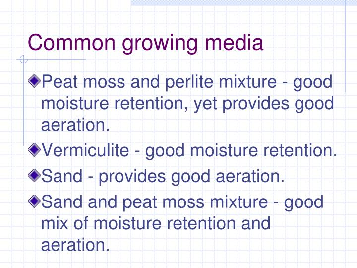 Common growing media