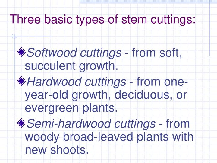 Three basic types of stem cuttings: