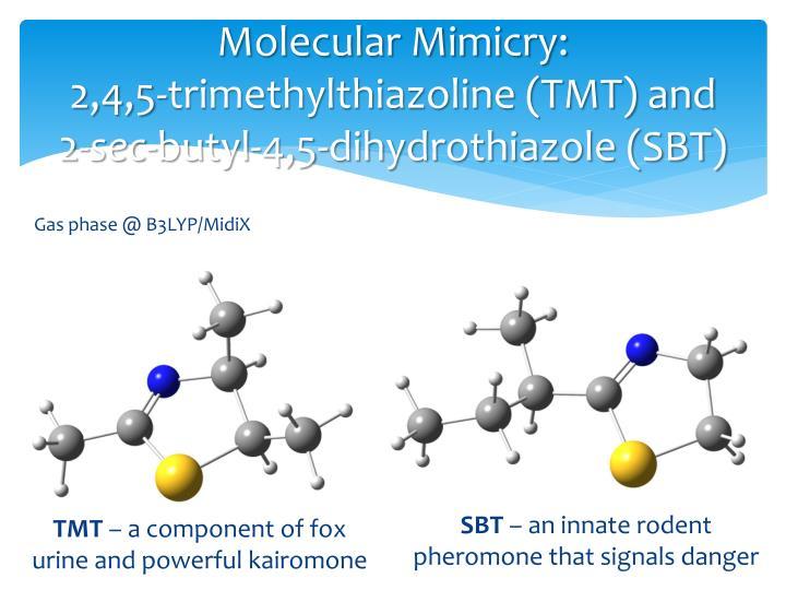 Molecular Mimicry:
