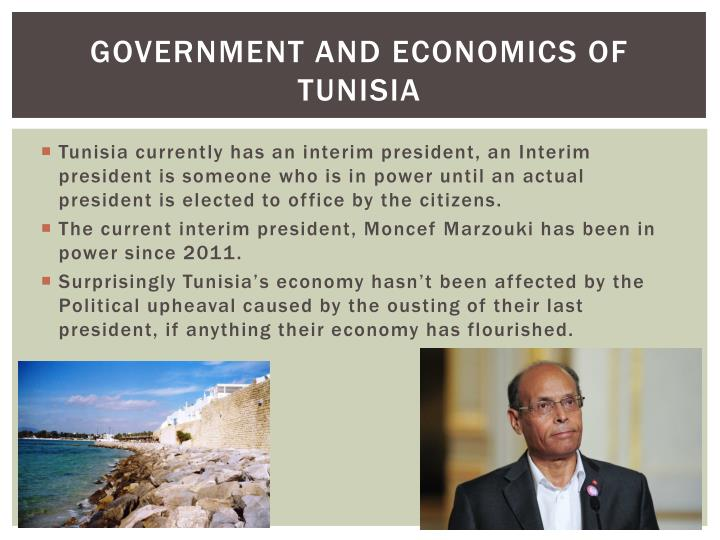 Government and Economics of Tunisia