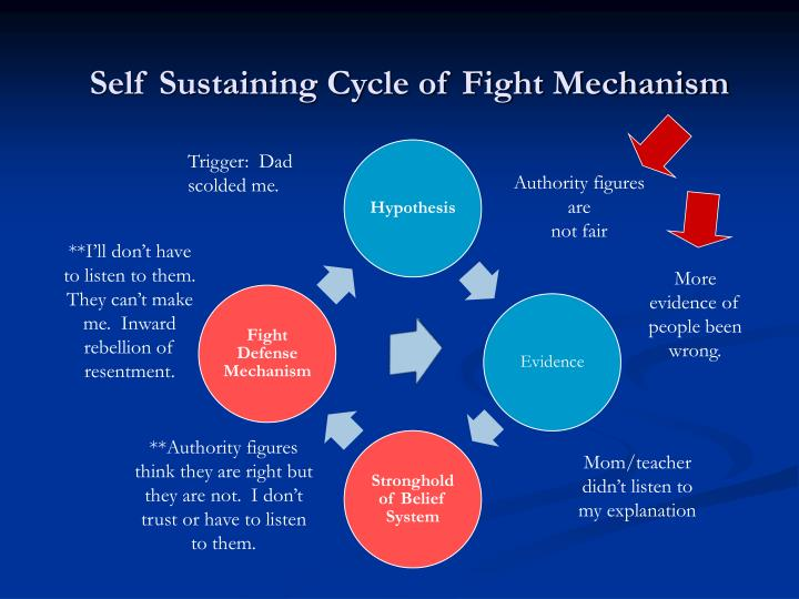 Self Sustaining Cycle of Fight Mechanism