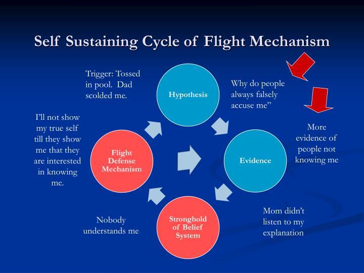 Self Sustaining Cycle of Flight Mechanism