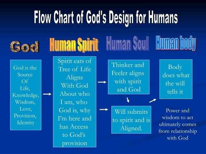 Flow Chart of God's Design for Humans