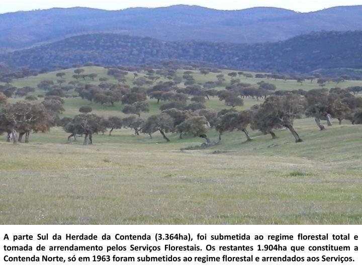 A parte Sul da Herdade da Contenda (3.364ha), foi submetida ao regime florestal total e tomada de arrendamento pelos Serviços Florestais. Os restantes 1.904ha que constituem a Contenda Norte, só em 1963 foram submetidos ao regime florestal e arrendados aos Serviços