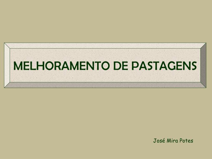 MELHORAMENTO DE PASTAGENS