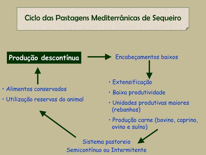 Ciclo das Pastagens Mediterrânicas de Sequeiro