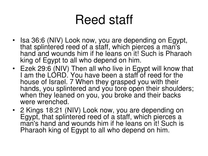 Reed staff