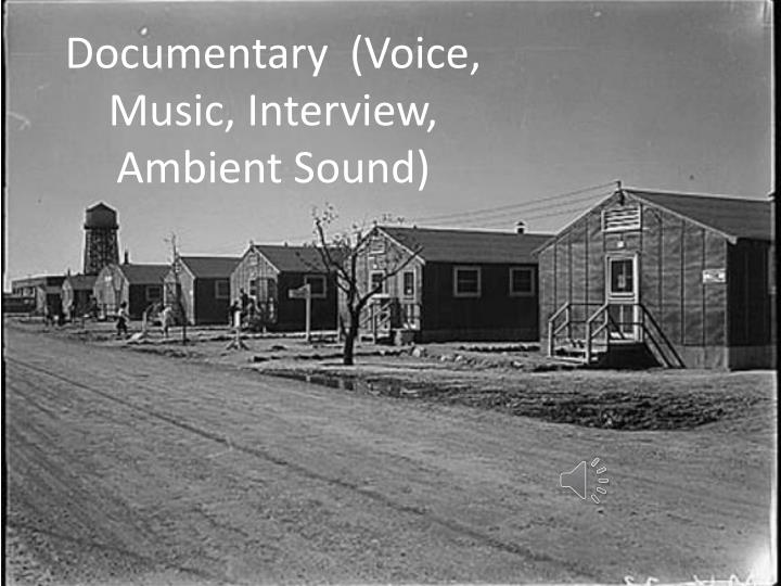 Documentary  (Voice, Music, Interview, Ambient Sound)
