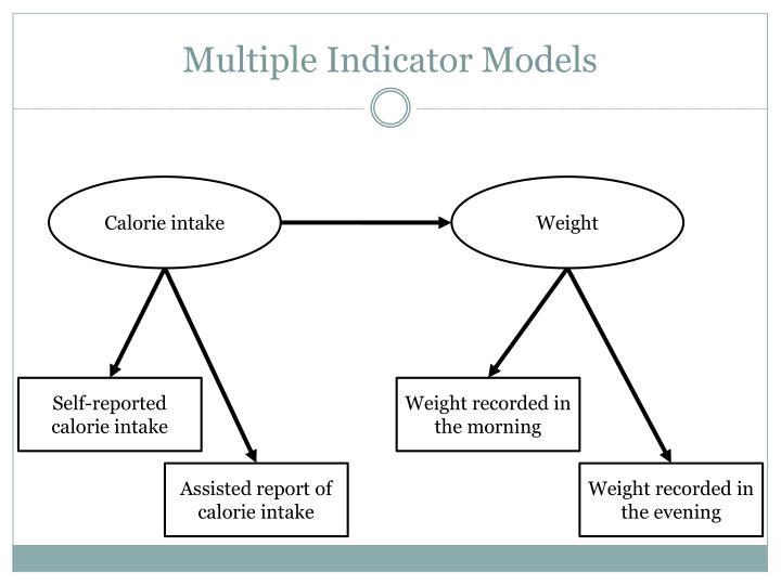 Multiple Indicator Models