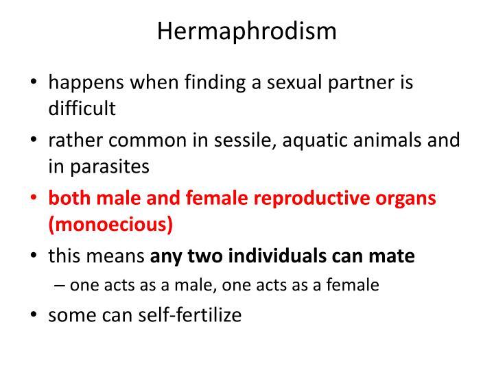 Hermaphrodism
