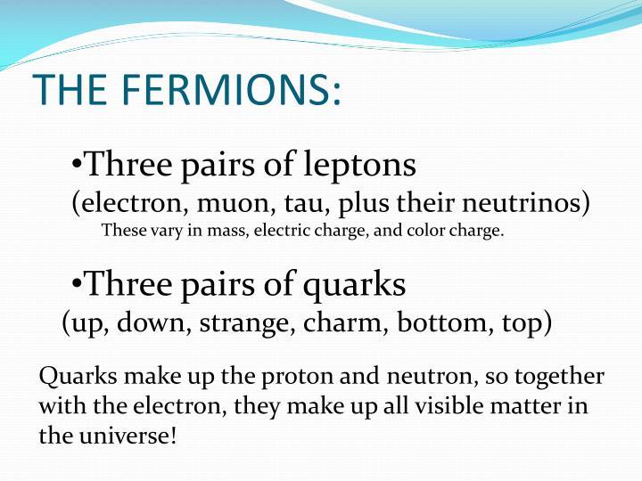 THE FERMIONS: