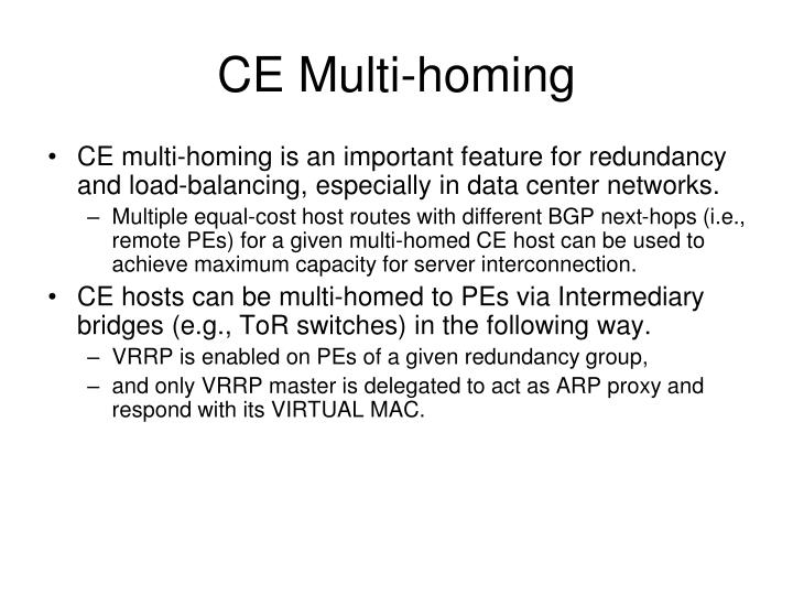 CE Multi-homing