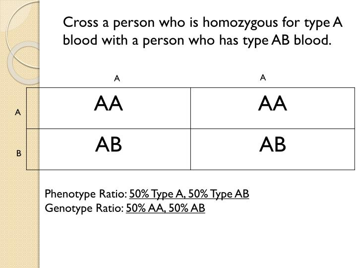 Cross a person who is homozygous for type A blood with a person who has type AB blood.