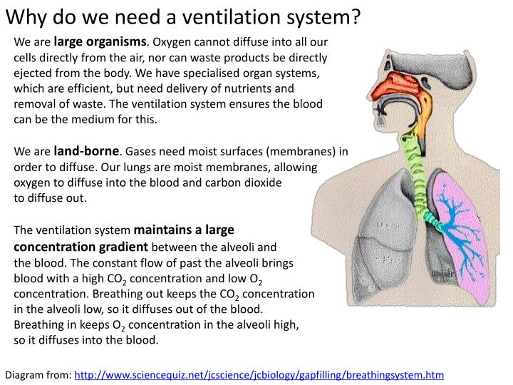 Why do we need a ventilation system?
