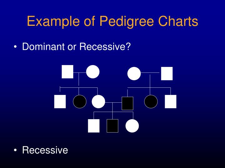 Example of Pedigree Charts
