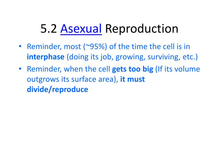 5 2 asexual reproduction