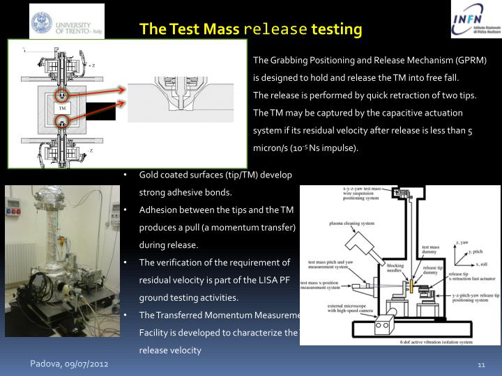 The Test Mass