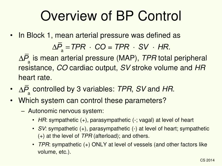 Overview of BP Control