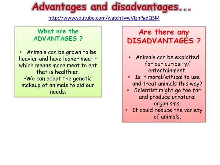 youtube advantages and disadvantages