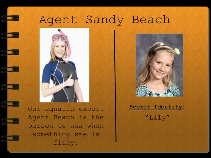 Agent Sandy Beach