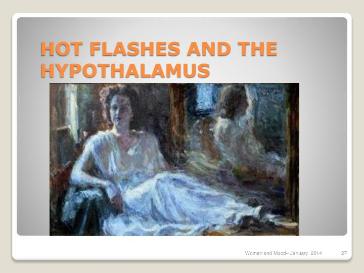 HOT FLASHES AND THE HYPOTHALAMUS
