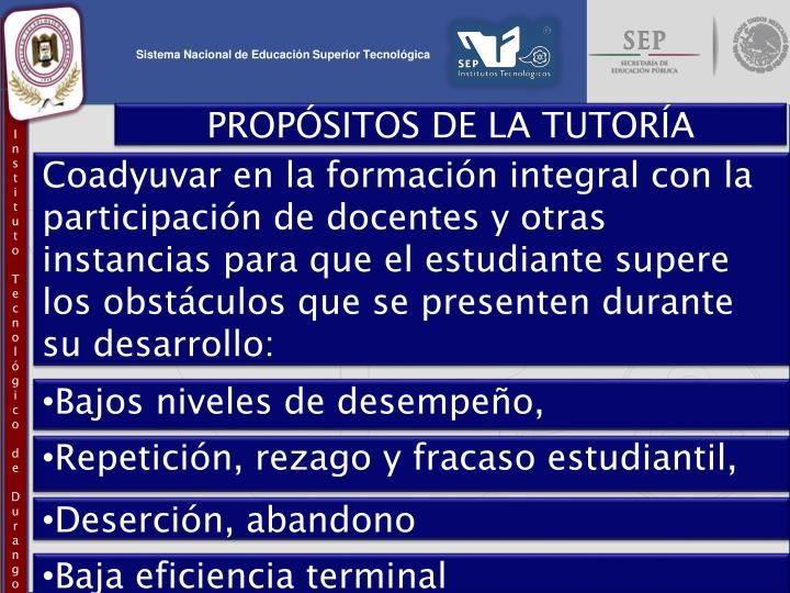 PROPÓSITOS DE LA TUTORÍA