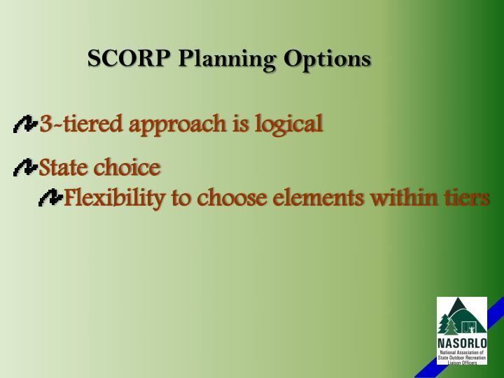 SCORP Planning Options