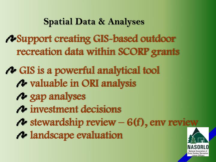 Spatial Data & Analyses