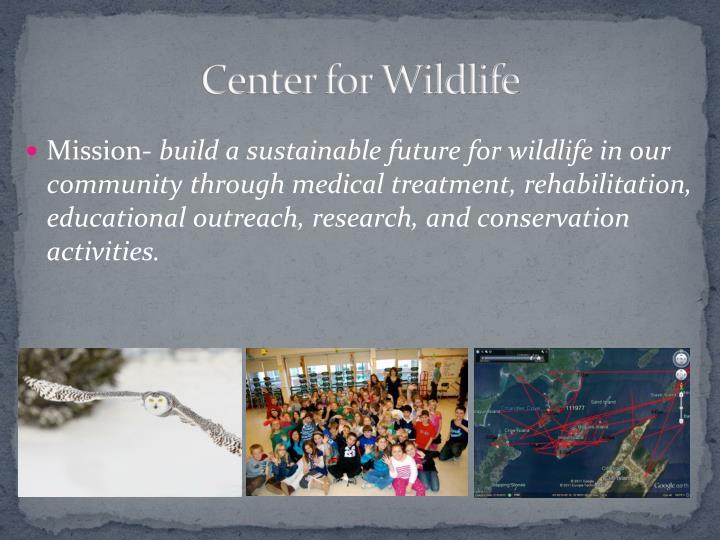 Center for Wildlife