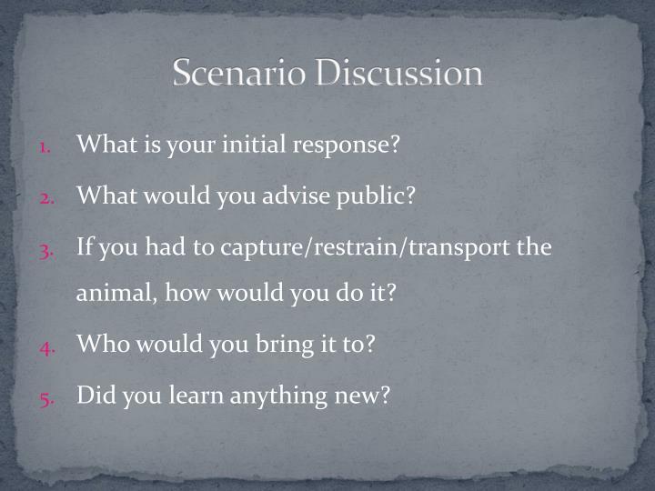 Scenario Discussion