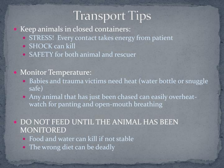 Transport Tips