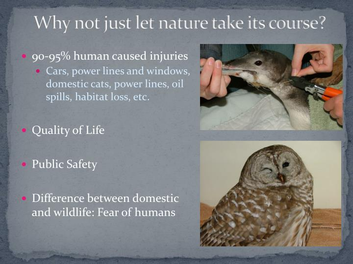 Why not just let nature take its course?