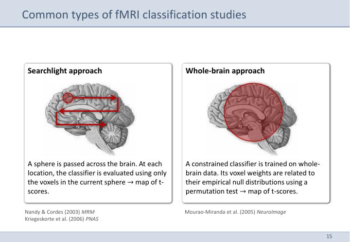 Common types of fMRI classification studies