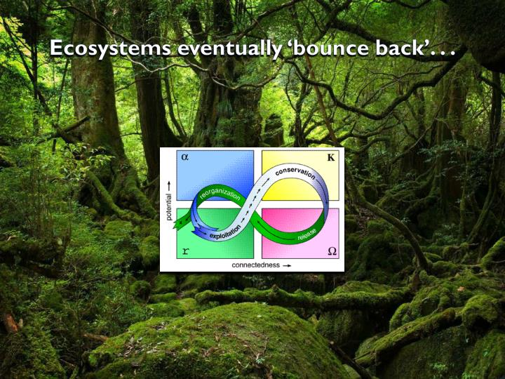 Ecosystems eventually 'bounce back'. . .
