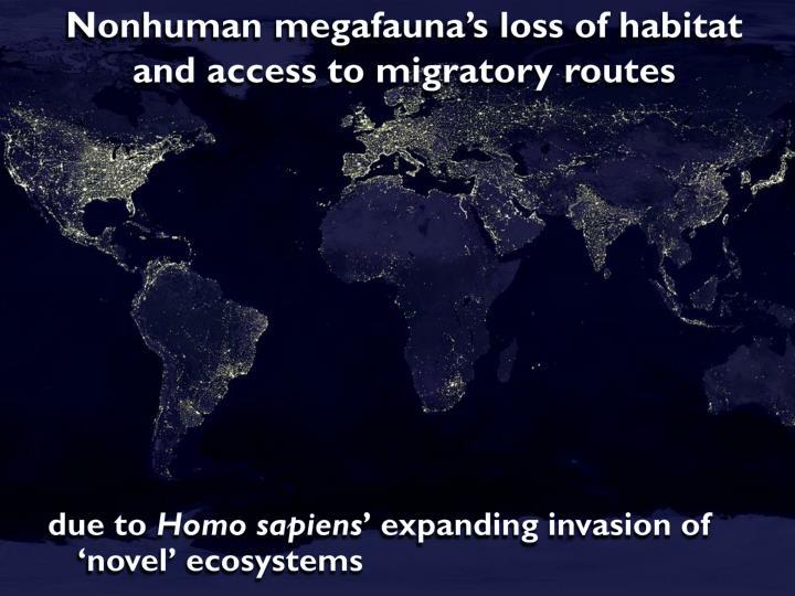 Nonhuman megafauna's loss of habitat and access to migratory routes