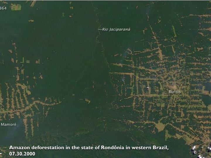 Amazon deforestation in the state of Rondônia in western Brazil, 07.30.2000