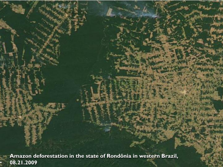 Amazon deforestation in the state of Rondônia in western Brazil, 08.21.2009