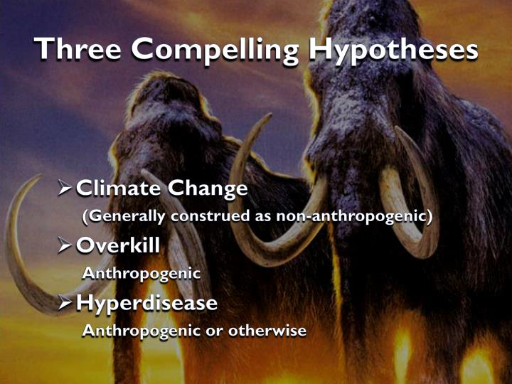 Three Compelling Hypotheses