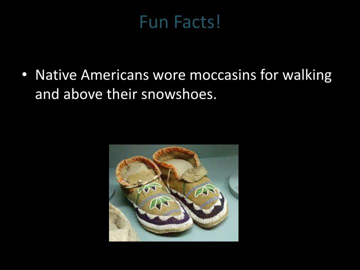 Fun facts1