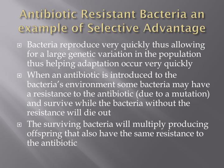 Antibiotic Resistance in Anaerobic Bacteria - Essay Example