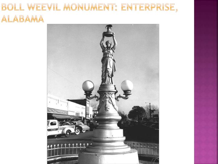 Boll Weevil Monument: Enterprise, Alabama