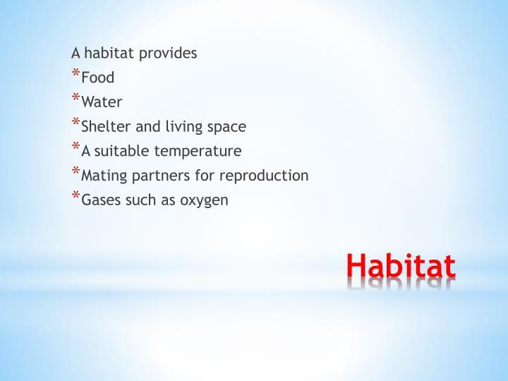 A habitat provides