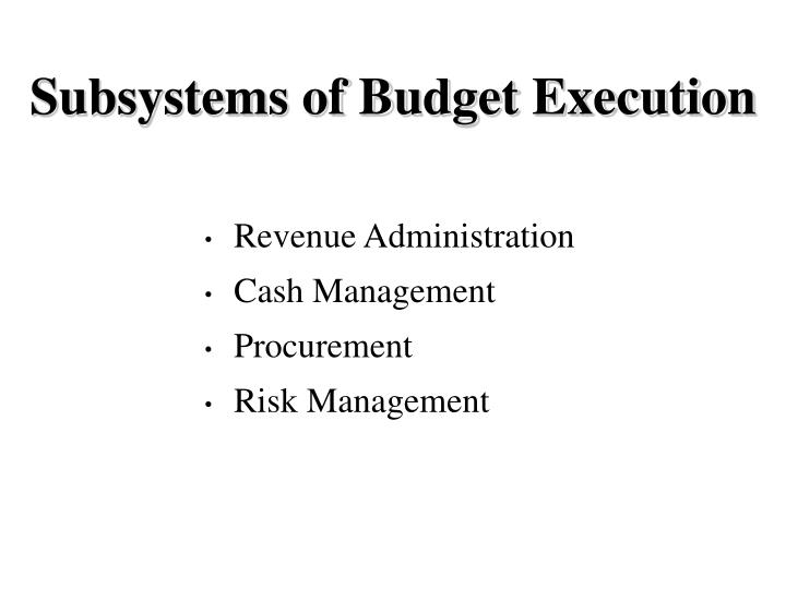 Subsystems of Budget Execution