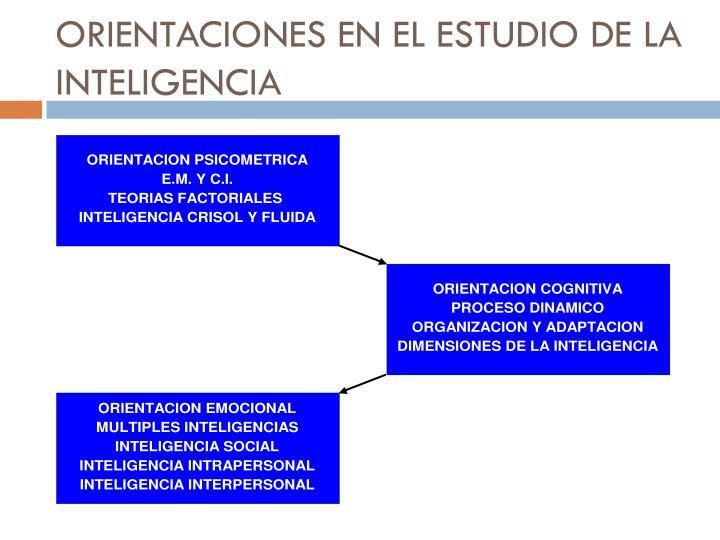 ORIENTACIONES EN EL ESTUDIO DE LA INTELIGENCIA