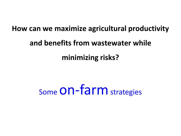 How can we maximize agricultural productivity and benefits from wastewater while minimizing risks?
