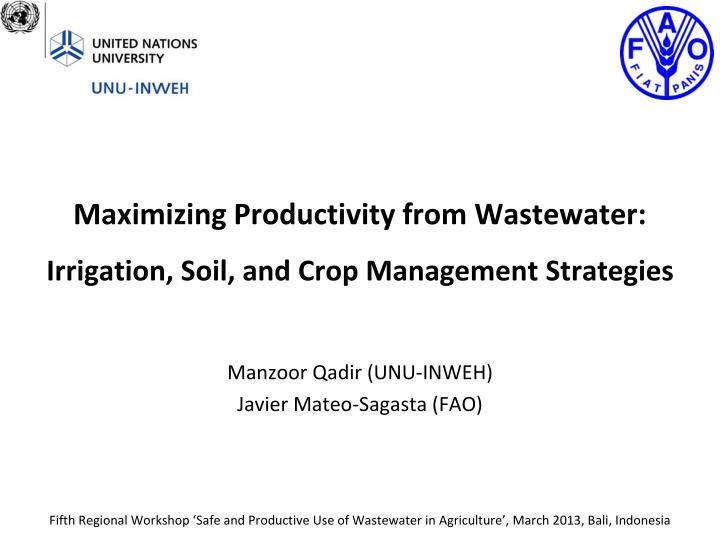 Maximizing productivity from wastewater irrigation soil and crop management strategies
