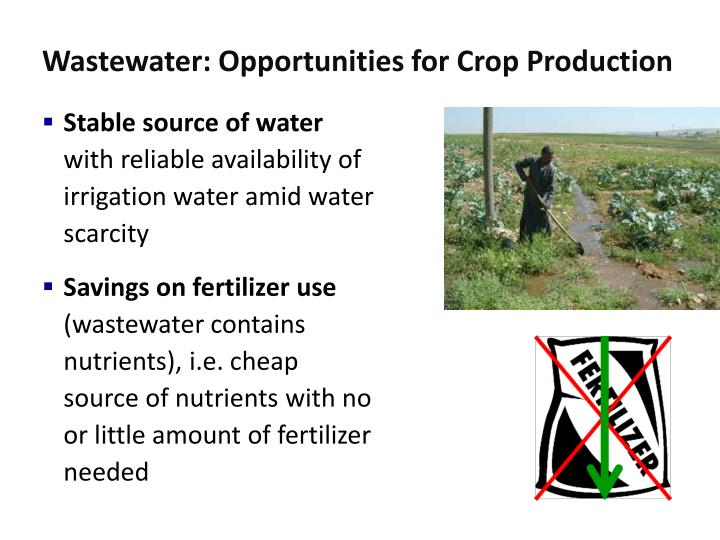 Wastewater: Opportunities for Crop Production