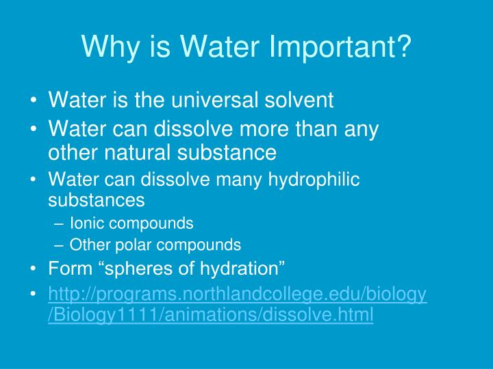 Why is Water Important?