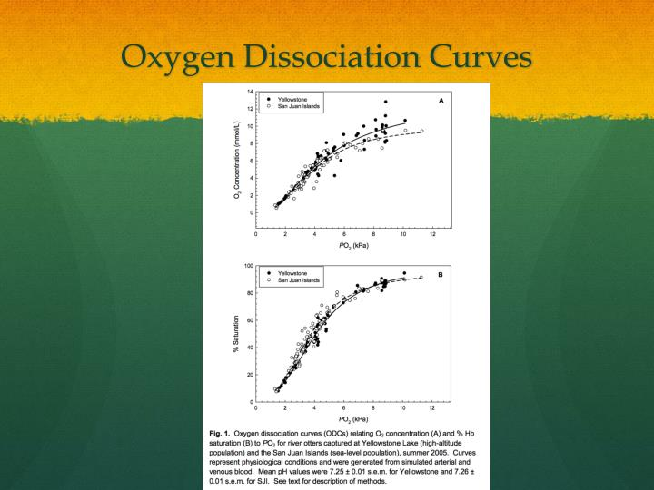 Oxygen Dissociation Curves